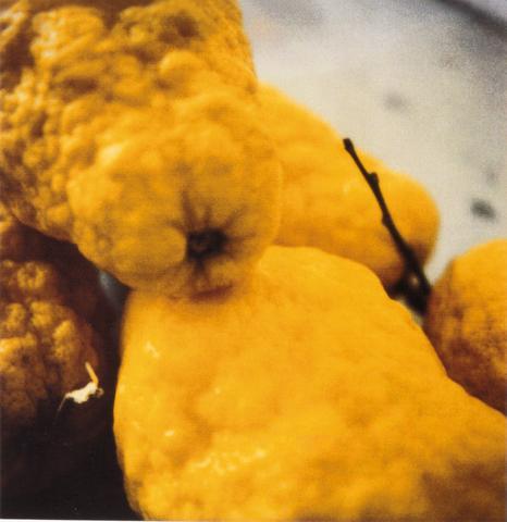 Lemons, 2005