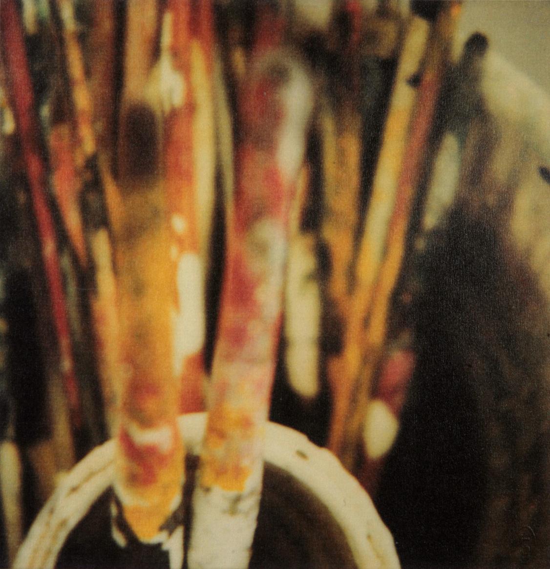 Brushes, 2005